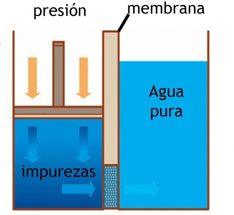El agua osm tica osmosis inversa for Membrana osmosis inversa
