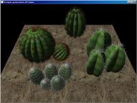 graph,graphogl,opengl,gl,3d,piante,plants,cactus,realistic