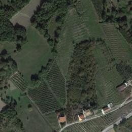 Macchia dei briganti Wines of Avellino, Italian wine
